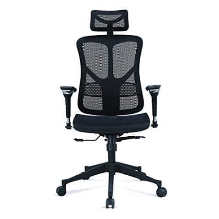 Argomax Mesh Ergonomic Office